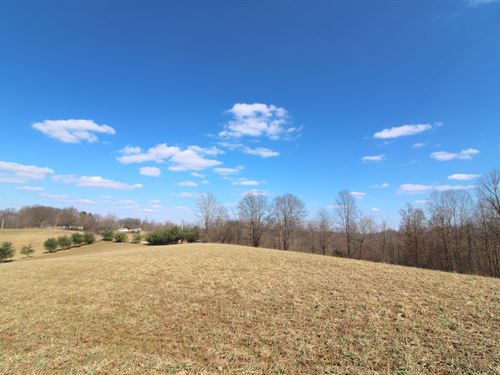 Norwalk Rd, 20 Acres : Kimbolton : Guernsey County : Ohio