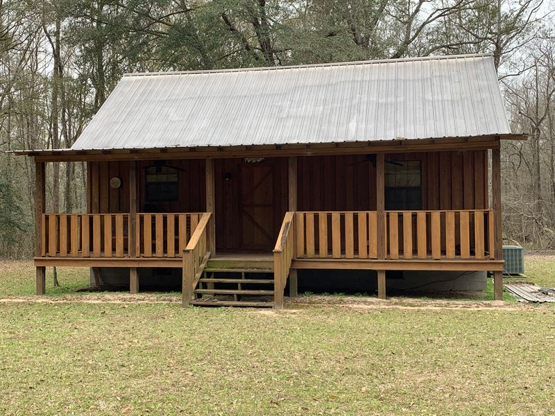 Prime Hunting On Creek With Cabin : Americus : Sumter County : Georgia