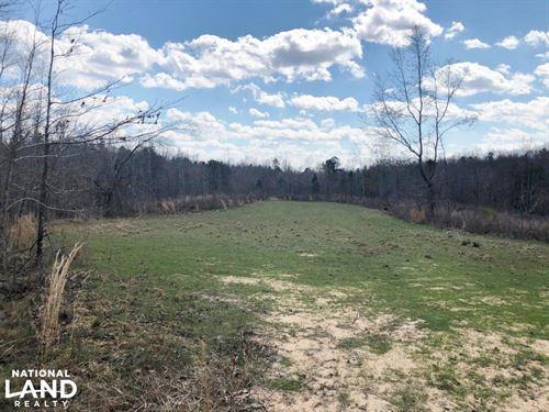 Hamilton Deer And Turkey Tract : Hamilton : Marion County : Alabama