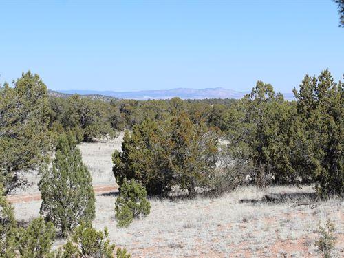 Northern Arizona 40 Acres For Sale : Seligman : Yavapai County : Arizona