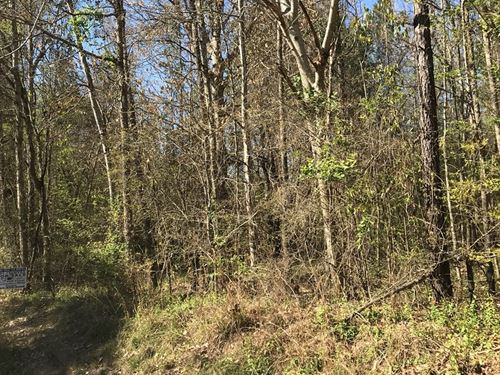 7.5 Acres Lincoln County Brookhaven : Brookhaven : Lincoln County : Mississippi