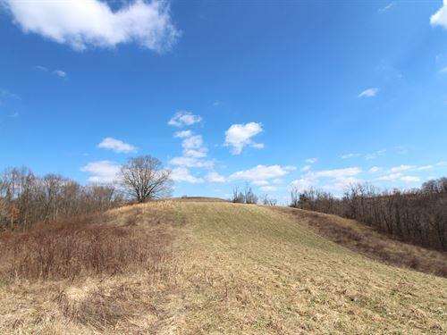 Pugh Ridge Rd, 43 Acres : Alledonia : Belmont County : Ohio
