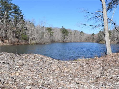 Lake on 19 Acres in Bremen : Bremen : Carroll County : Georgia