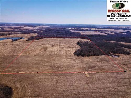 70.7 Acres in Lewis County With th : Lewistown : Lewis County : Missouri