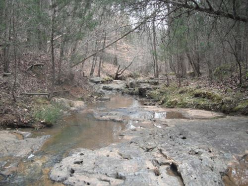 95 Acres, Cherokee County, Sc : Gaffney : Cherokee County : South Carolina
