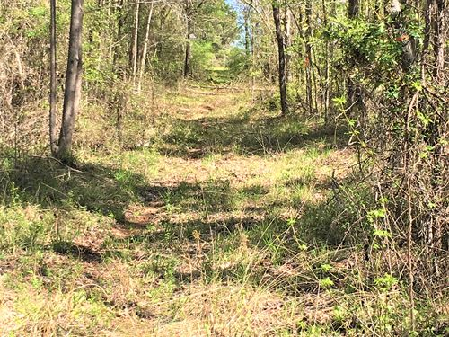 Crescent Acres : Jeffersonville : Twiggs County : Georgia