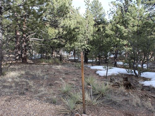 5.80 Acres in Cuerno Verde Pines : Westcliffe : Custer County : Colorado