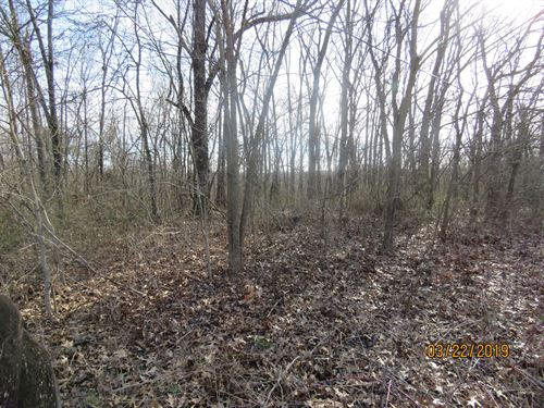 Land For Sale in Douglas County : Ava : Douglas County : Missouri