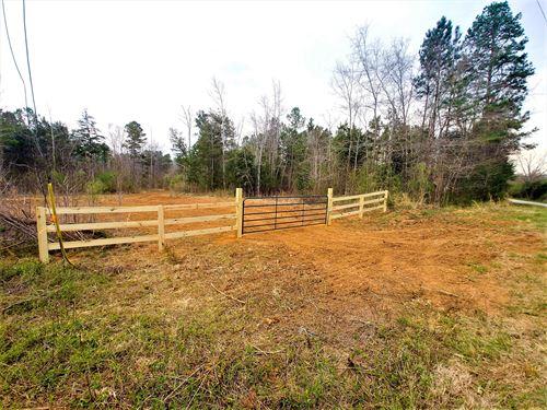 Long Branch Tract B : Clinton : Laurens County : South Carolina