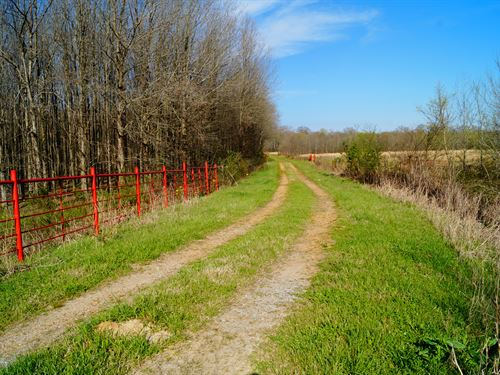 Argyle Farm 248 : Bentonia : Yazoo County : Mississippi