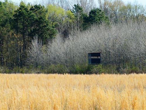 Argyle Farm 462 : Bentonia : Yazoo County : Mississippi