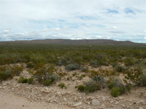 80 Acs, Hunting Land $525/Mo : Sierra Blanca : Hudspeth County : Texas