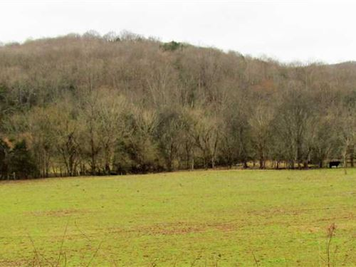 41 Acres in Wilson County TN : Watertown : Wilson County : Tennessee