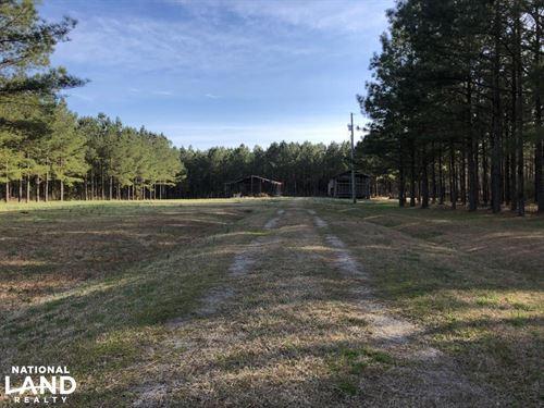 Enfield Hunting / Homesite / Timber : Enfield : Halifax County : North Carolina