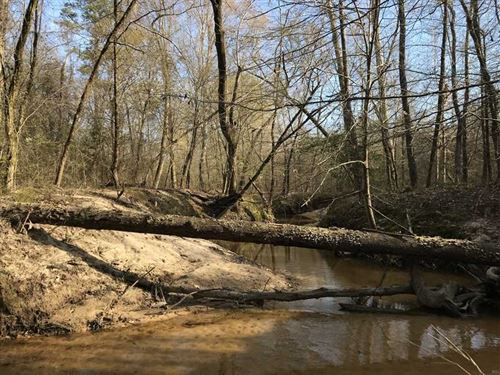 40 Acre Hunting, Investment & Recr : Camden : Madison County : Mississippi