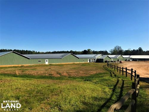 Batesburg Chicken Breeder Farm : Batesburg : Saluda County : South Carolina