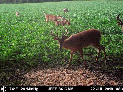 The Muddy Creek 84, Jefferson CO : Meriden : Jefferson County : Kansas