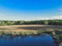 Six Mile Creek : Manning : Clarendon County : South Carolina