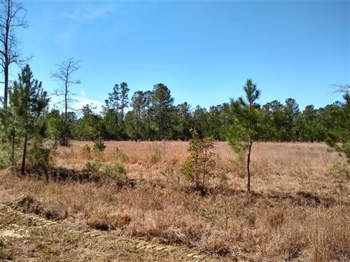 260 Acres, Georgetown County, Sc : Georgetown : South Carolina