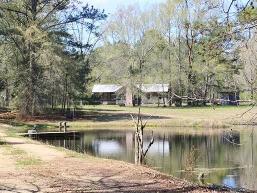 900 Acres Timberland / Recreational : Louin : Jasper County : Mississippi