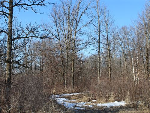 140 Acres Mille Lacs Cty Land : Isle : Mille Lacs County : Minnesota