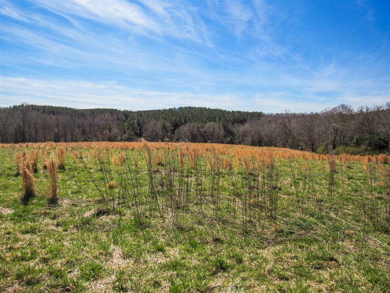 18 37 Acre Mini Farm : Farm for Sale : Woodruff : Spartanburg County :  South Carolina