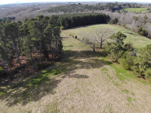 Great Property With Pasture, Pines : Martin : Stephens County : Georgia