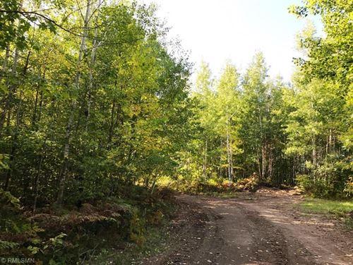 80 Acres Potlatch Managed Land : Cloquet : Saint Louis County : Minnesota