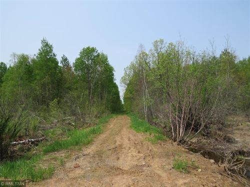 40 Acres Hunting Land Public Land : Finlayson : Aitkin County : Minnesota