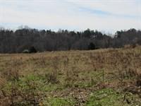 34.75 Acre River Front Mini Farm : Woodruff : Spartanburg County : South Carolina