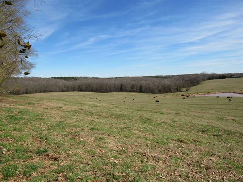55.27 Acre River Front Mini Farm : Woodruff : Spartanburg County : South Carolina