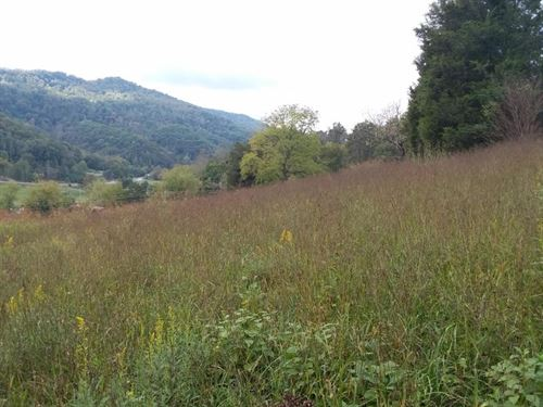 Beautiful Property And View : Sneedville : Hancock County : Tennessee