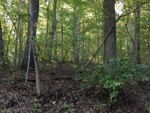 Gorgeous Views On This 22 Acres : Sneedville : Grainger County : Tennessee