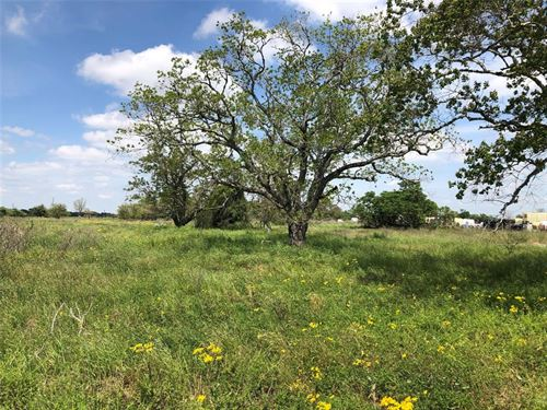 Land Opportunity : Cuero : DeWitt County : Texas