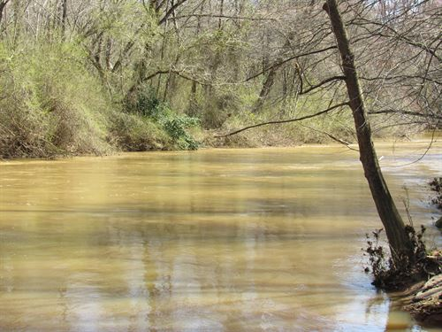 28.97 Acre River Front Wooded Lot : Woodruff : Spartanburg County : South Carolina