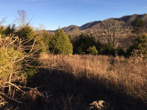 10 Acres Of Unrestricted Land : Sneedville : Hancock County : Tennessee