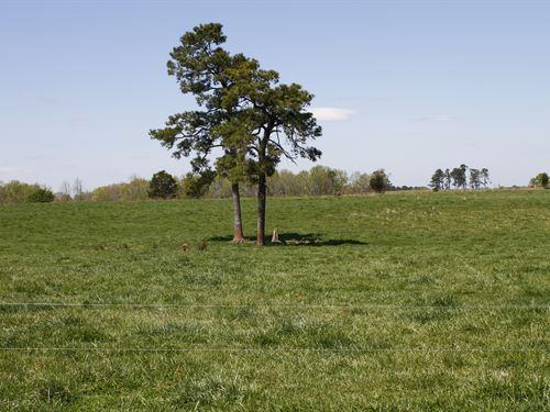 Established Pasture With Open Views : Crawford : Oglethorpe County : Georgia