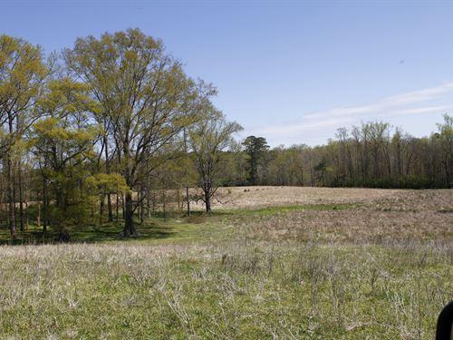 Lanier Lane Tract : Crawford : Oglethorpe County : Georgia