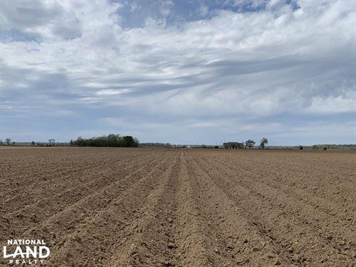 52 Acres of Irrigated, Leveled Farm : Start : Richland Parish : Louisiana