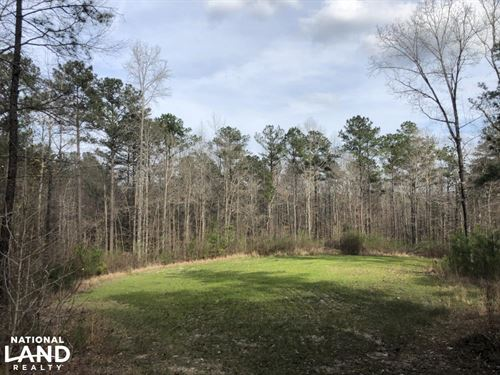 Eclectic 33 Homesite And Timber : Eclectic : Elmore County : Alabama