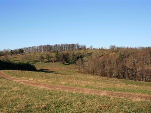 8.65 Acres Land Patrick County : Meadows Of Dan : Patrick County : Virginia