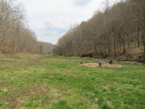 43.74Ac, 2 Springs, Creek, Mt Views : Celina : Clay County : Tennessee