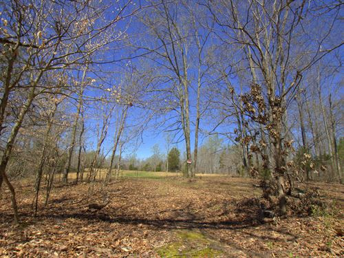 Private And Scenic 20 Acres : Lawrenceburg : Giles County : Tennessee