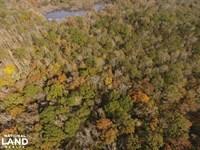 Catoma Creek Timber, Hunting, And : Ramer : Montgomery County : Alabama