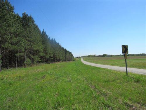 Deluxe Recreational Property : Notasulga : Tallapoosa County : Alabama