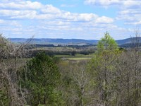 Hambrick Hollow Hillside : Stevenson : Jackson County : Alabama