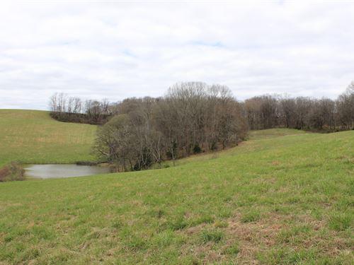 67 Acres Santa Fe Tn Farm : Santa Fe : McMinn County : Tennessee