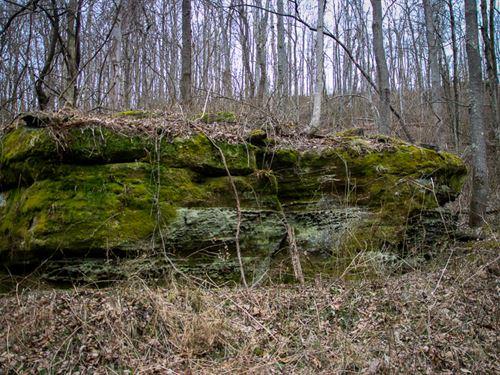 Sr 83, 14 Acres : Coshocton : Ohio