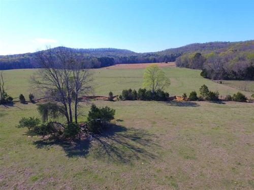 134 Acres Near Bankhead National : Wren : Lawrence County : Alabama