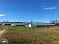 Williston Poultry Farm : Williston : Barnwell County : South Carolina
